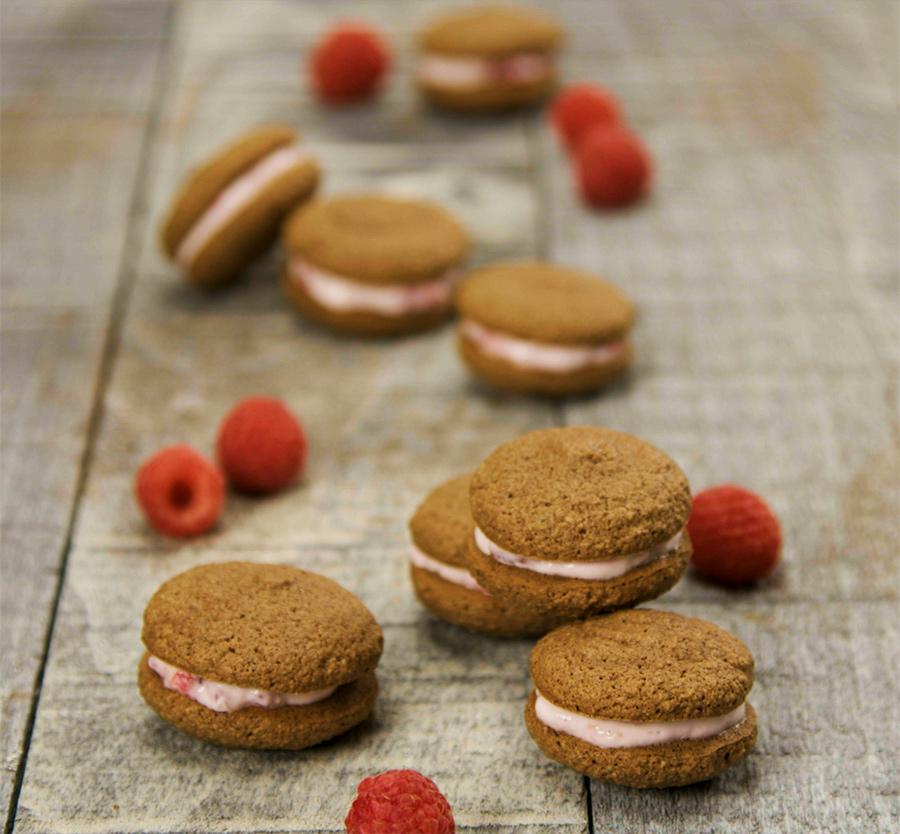 raspberry chocolate mini macarons with raspberries