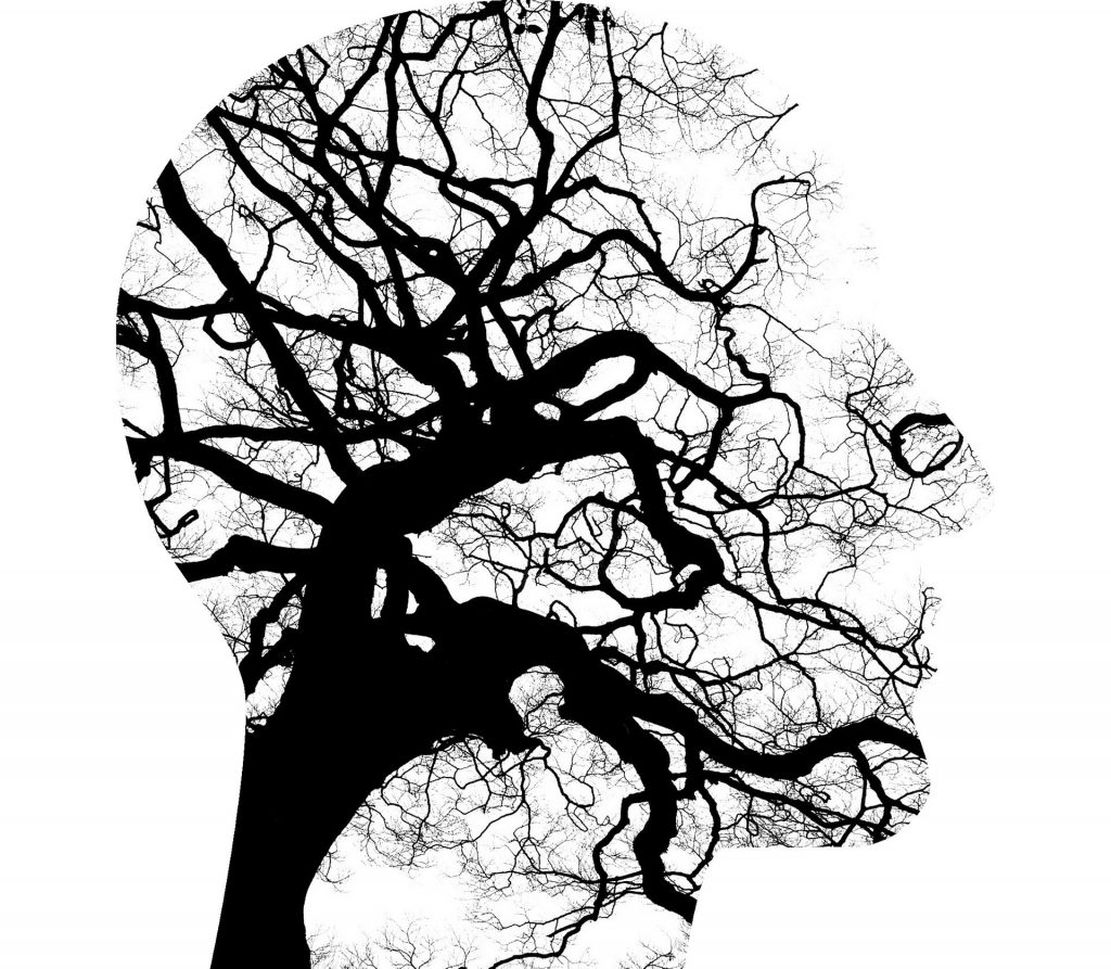 Face with brain stem tree