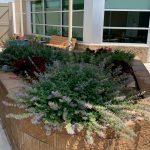 Barrick & Kristi Wilson Terrace at the Senior Behavioral Health Center at NMC Health Medical Center in Newton KS